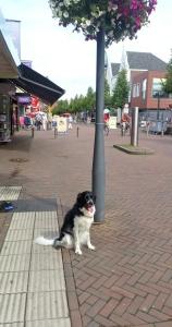 In het centrum van Waalwijk even stoppen voor een foto.